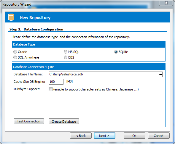 Safyr Salesforce Configure Database