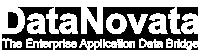 DataNovata logo